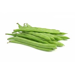 Poroto verde