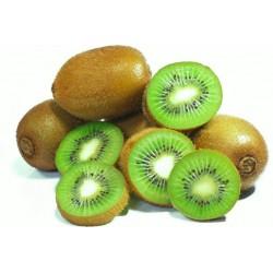 Kiwi Kg.
